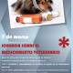 Jornada Medicamentos Veterinarios